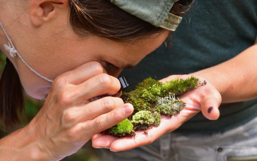 Biodiversity Hotspot!